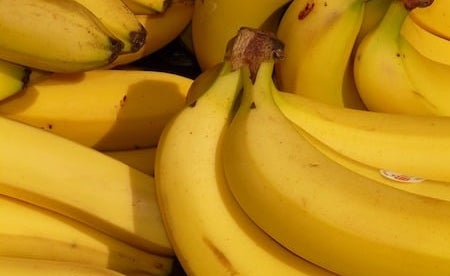 a large collection of yellow ripe bananas