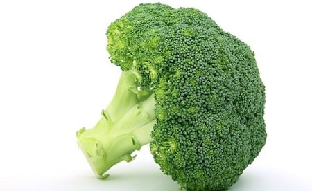 a single broccoli.