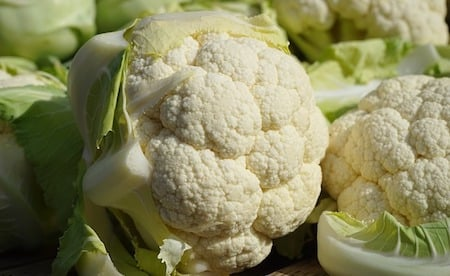 a cauliflower bulb