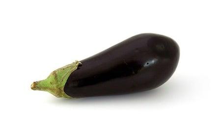 a single eggplant, aubergine